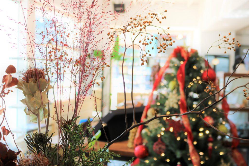 Merry Christmas メリークリスマス 岡山眼鏡店 okayamagankyoten