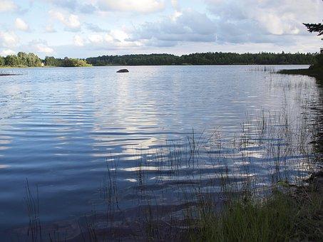 BASS FISHING バスフィッシング 釣り 池 湖 Sports Lab. by 岡山眼鏡店 スポーツラボ okayamagankyoten