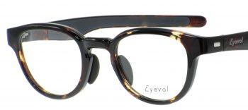 Eyevol BINGHAM 47 DM LG ¥20,000 001